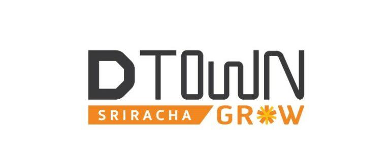 logo ดีทาวน์โกร